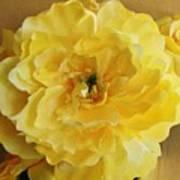 Yellow Elagance Art Print