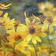 Yellow Flower View 4851 Idp_2 Art Print