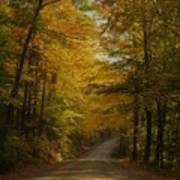 Yellow Leaves Road Art Print