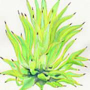 Yellow Octopus Agave Art Print