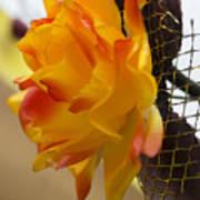 Yellow-orange Flower Art Print
