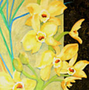 Yellow Orchids With Black Screen Art Print