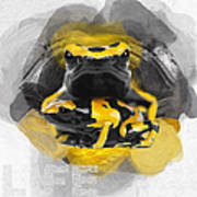 Yellow Poison Dart Frog No 04 Art Print