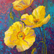 Yellow Poppies Art Print