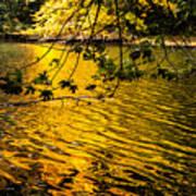 Yellow Reflection Art Print