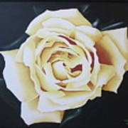 Tea Rozsa Art Print