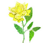 Yellow Rose, Painting Art Print