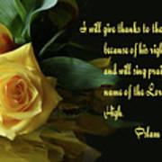 Yellow Rose Ps.7 V 17 Art Print