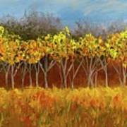 Yellow Stand Of Trees Art Print