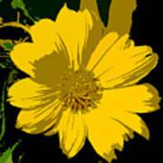 Yellow Sunshine Work Number 8 Art Print