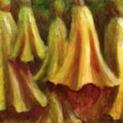 Yellow Trumpet Flowers Art Print