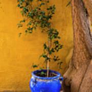Yellow Wall, Blue Pot Art Print