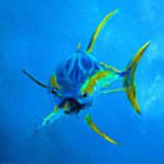 Yellowfin Tuna Three Art Print