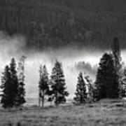 Yellowstone 157 Art Print