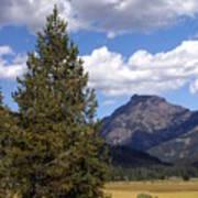 Yellowstone Landscape Art Print