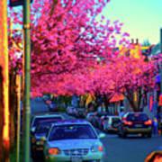 Yew Street Spring Art Print