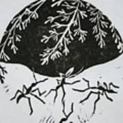 Yin Yang Art Print by Pati Hays