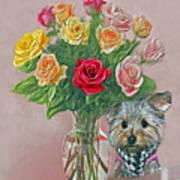 Yorkey Rose Art Print