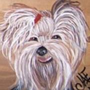 Yorkie Smiles Art Print
