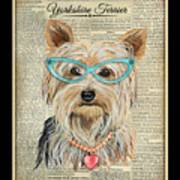 Yorkshire Terrier-jp3856 Art Print