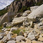 Yosemite Rockslide Art Print