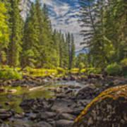 Yosemites N Park Art Print