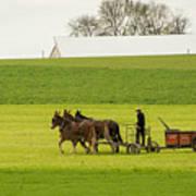 Young Amish Farmer Art Print