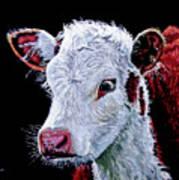 Young Bull Art Print