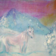 Young Horse On Snowy Mountain Art Print