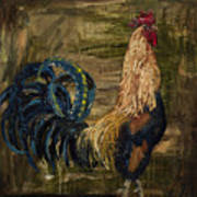 Young Rooster Art Print