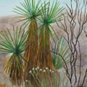 Yucca Stand Art Print