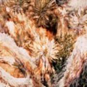 Yucca Warm Patch Art Print