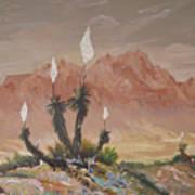 Yuccas In Bloom Art Print