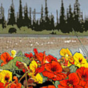 Yukon Flowers Art Print