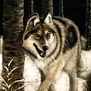 Zane Gray Wolf Art Print