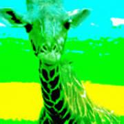 Zany Giraffe Art Print