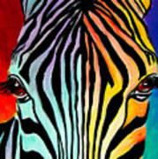 Zebra - End Of The Rainbow Art Print