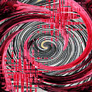 Zebra And A Rose Art Print