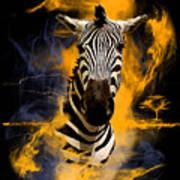 Zebra In Africa Art Print