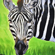 Zebra In The Wild Art Print