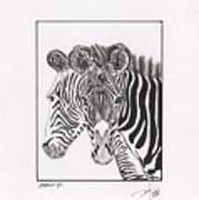 Zebra Series 6 Art Print