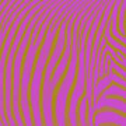 Zebra Shmebra Art Print