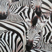 Zebra Triptyche Right Art Print