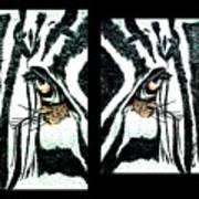 Zebras Eye - Studio Abstract  Art Print