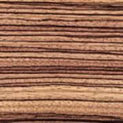 Zebrawood - Natural Abstract Art Print