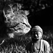 Zen Cat Black And White- Photography By Linda Woods Art Print