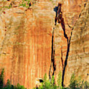 Zion Rock Wall Art Print