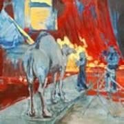 Zohan Camel Art Print