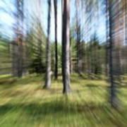 Zoom Photo Art Print