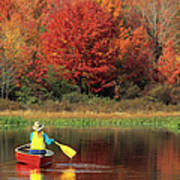 A Person Canoeing In Pennsylvania Art Print
